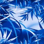 Jungle Blu